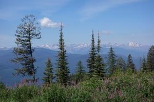 Top of Richmond Peak